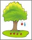 æbletræ.jpg